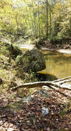 Winchester, Кентукки: This is the kinder, gentler side of Red River Gorge.