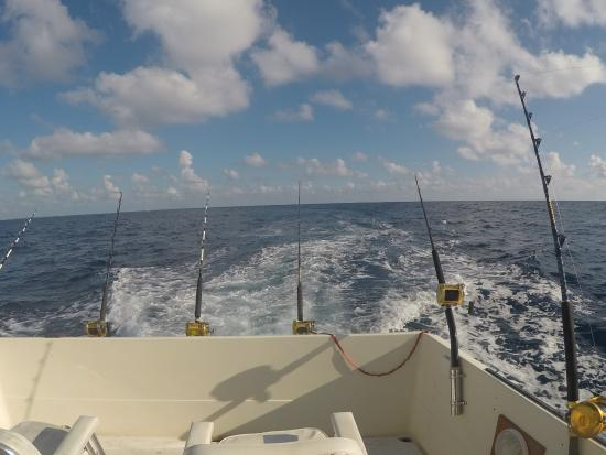 Lines out picture of belize fishing charters san for Deep sea fishing san pedro