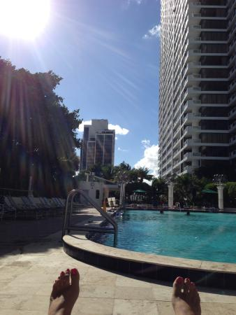 Doubletree by Hilton Grand Hotel Biscayne Bay: Roof top pool and hot tub