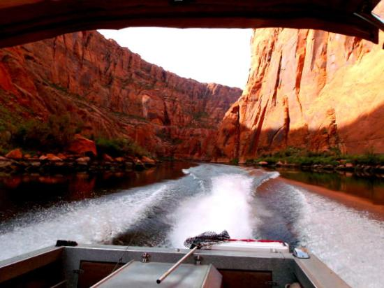 Glen canyon dam picture of lees ferry anglers marble for Lees ferry fishing report