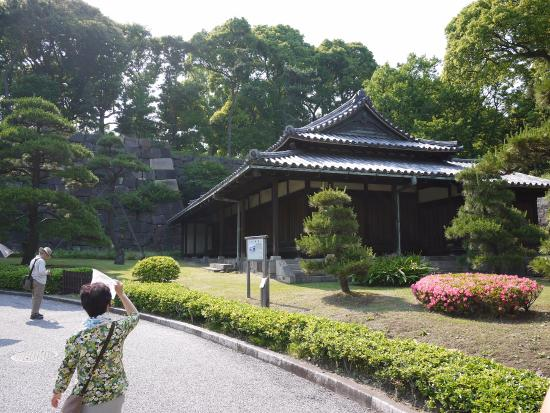 Koi swimming peacfully - Picture of The East Gardens of the Imperial Palace (...