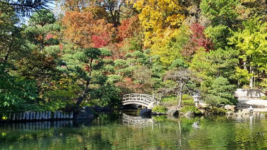 Garden Of Reflection Picture Of Anderson Japanese Gardens Rockford Tripadvisor