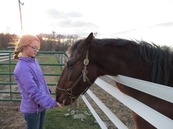 Coopersburg, PA: Feeding Truit a snack.  Keep your hand flat, and careful he doesn't nibble your jacket!