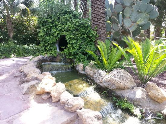 Ручеек - Picture of Palm Groves (Palmeral) of Elche, Elche - TripAdvisor