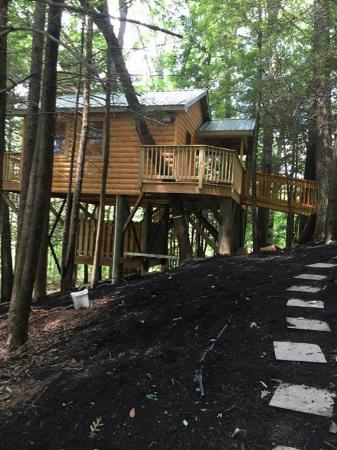 Beaver, WV: WV's Wild Wonderful Treehouse