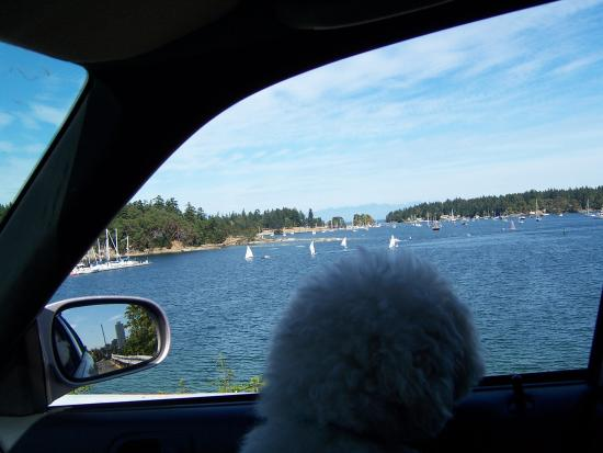 View from Island Highway Nanaimo Harbour