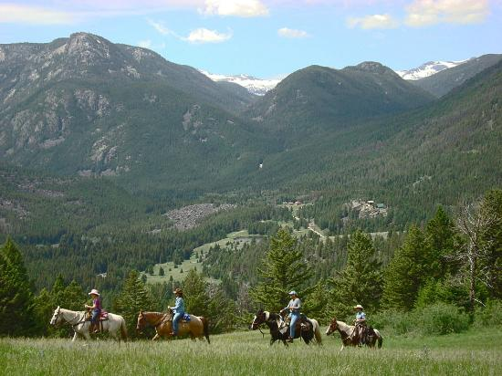 Hawley Mountain Guest Ranch: view from high meadow
