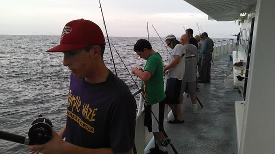Fishing line setup picture of dolphin deep sea fishing for Dolphin deep sea fishing