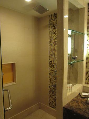 shower picture of radisson blu agra taj east gate agra tripadvisor. Black Bedroom Furniture Sets. Home Design Ideas
