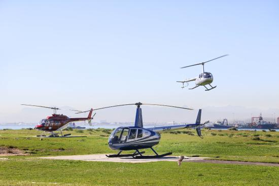 The Goodlooking One Is The Pilot  Picture Of Cape Town Helicopters Cape Tow