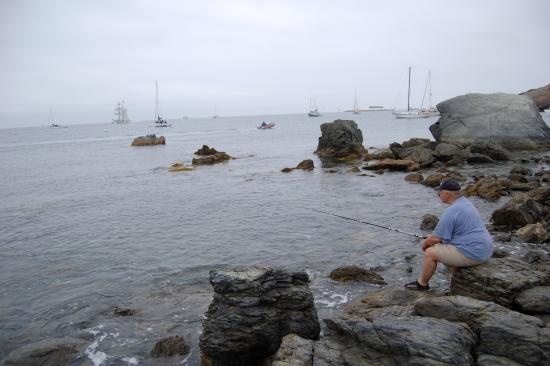 Two harbors photos featured images of two harbors for Catalina island fishing report