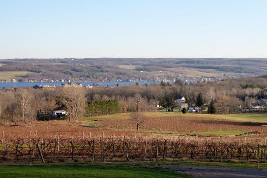 Keuka Park, NY: View of Keuka College & the lake