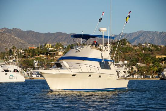 For fishing fun picture of los cabos yacht management for San jose del cabo fishing charters