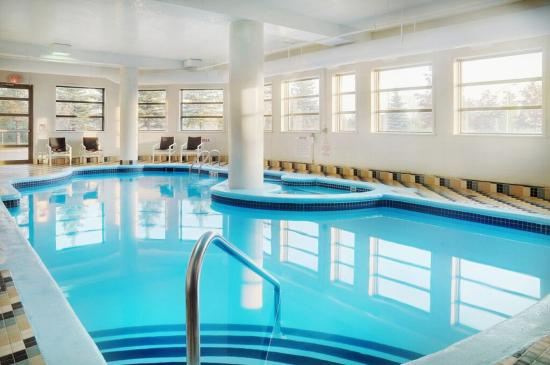 Indoor Swimming Pool Picture Of Holiday Inn Suites Ottawa Kanata Ottawa Tripadvisor