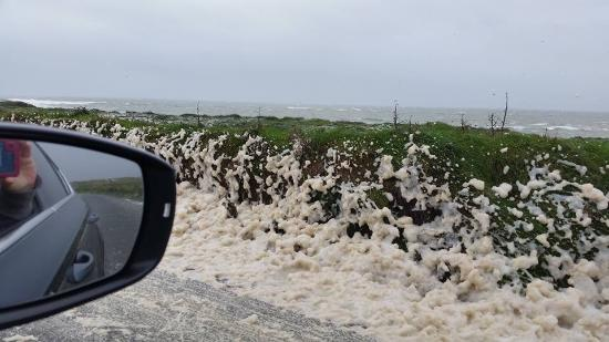 Fethard On Sea, Ireland: Sea Foam that was blown up and over the cliff
