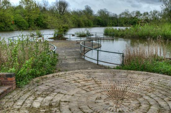 Withy Pool Telford Town Park Picture Of Telford Town Park Telford Tripadvisor