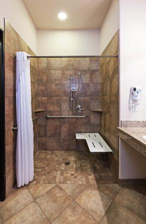 Brady, TX: ADA/Handicapped accessible Guest Bathroom with roll-in shower