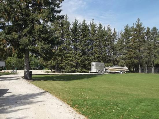 Selkirk, Canada: Front lawn and one of the parking areas at Bridgeview B&B