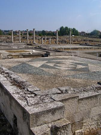Archaeological Site at Pella, Central Macedonia, Greece