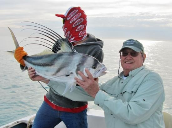 Rooster fish what a fight picture of hilton los cabos for Rooster fish cabo