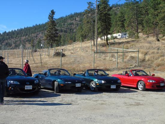 Okanagan Falls, Canada: The many Miatas