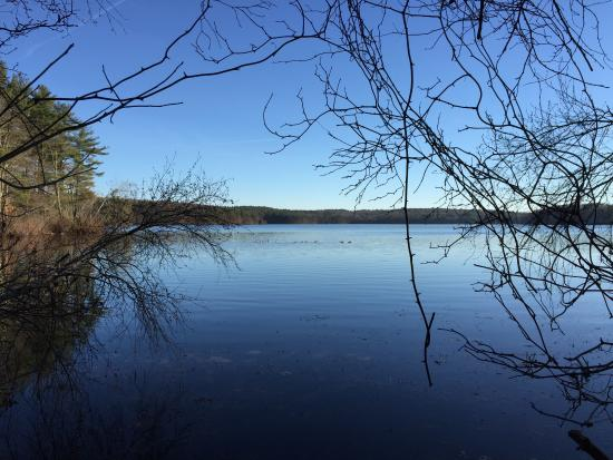 Hopkinton, MA: Lake Whitehall State Park - View From Hiking trail
