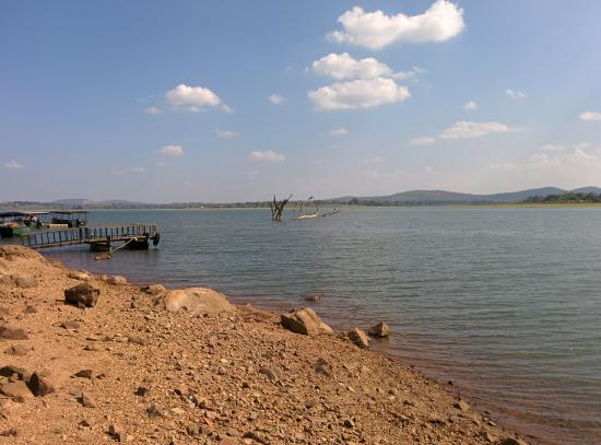 Kabini River Bank In Front Of Maharaja Cottage Picture