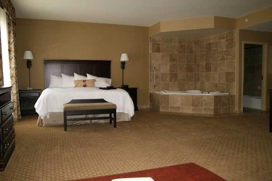 suite picture of hampton inn waco north lacy lakeview. Black Bedroom Furniture Sets. Home Design Ideas