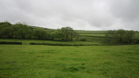 Bradworthy, UK: View of the countryside from the cottage
