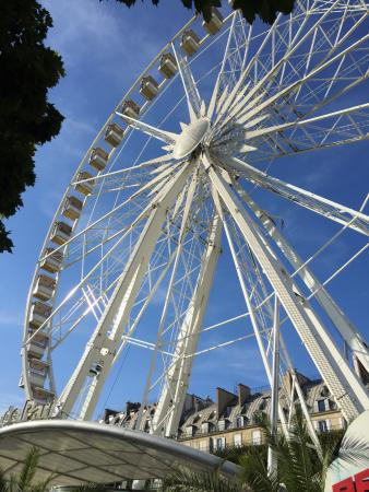 Grand roue picture of jardin des tuileries paris for Plus grand jardin de paris