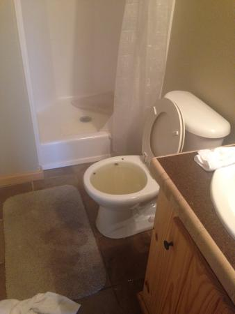 Willis, TX: backed up toilet from kleenex and blowing nose first morning