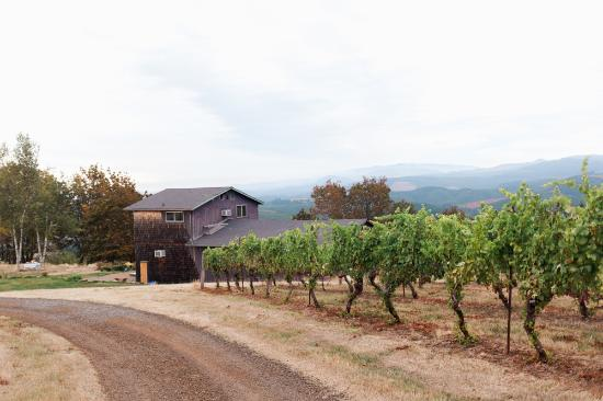 Sweet Home, OR: winery