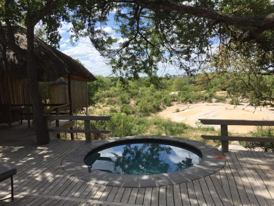 Londolozi Private Game Reserve, South Africa: photo0.jpg
