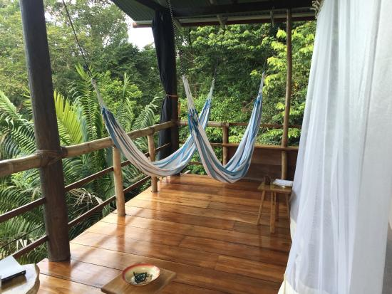 La Loma Jungle Lodge and Chocolate Farm: Hammocks in paradise