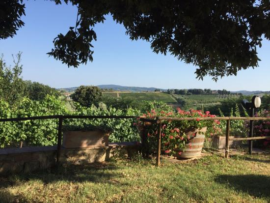 Gambassi Terme, Italy: View from the lawn in front of the house