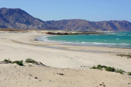 Al Sifah Beach Muscat Oman Address Phone Number