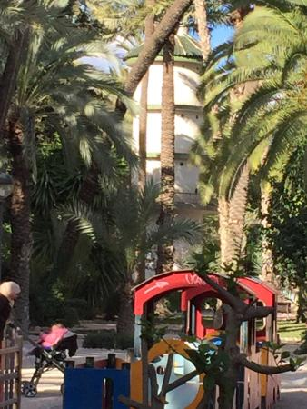 photo8.jpg - Picture of Palm Groves (Palmeral) of Elche, Elche - TripAdvisor