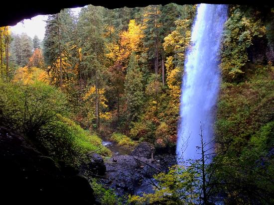 Sublimity, OR: Almost at the end of the trail one of the last falls.