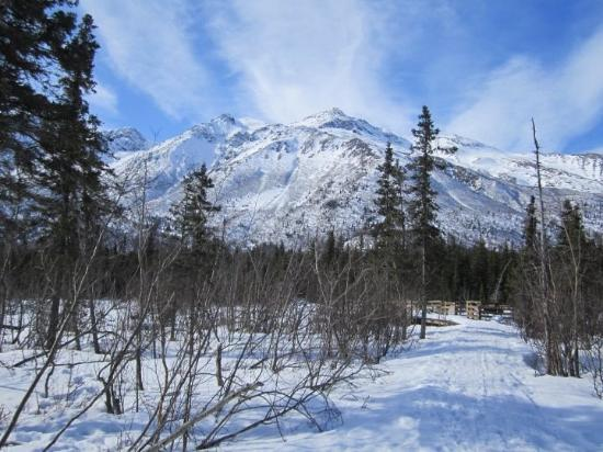 Eagle River, AK: more views