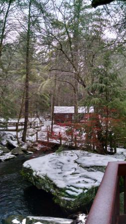 Canadensis, PA: View from the back deck