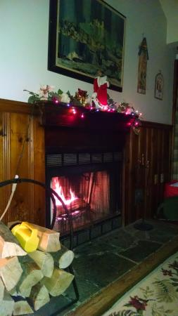 Canadensis, PA: Fireplace with wood
