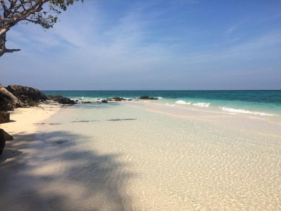 IMG_20160115_120356_large.jpg - Picture of Bamboo Island, Ko Phi Phi Don - Tr...