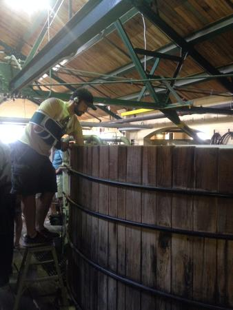 Lawrenceburg, KY: Cypress fermentation barrels, they let us dip a finger in and try it