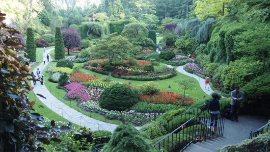 Butchard Garden Picture Of Butchart Gardens Central