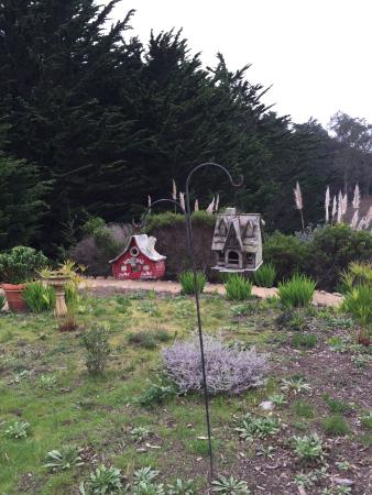 Moss Beach, CA: View of the garden