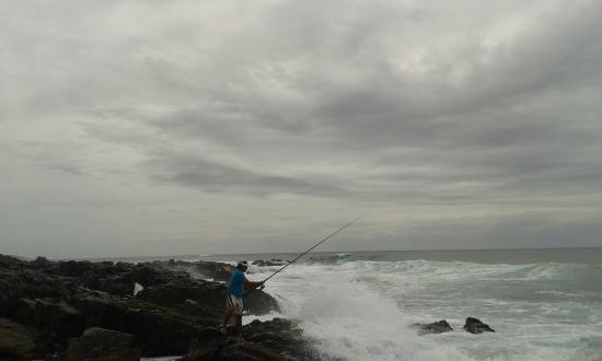 Fishing from the rocks picture of kob inn beach resort for Willow beach fishing report