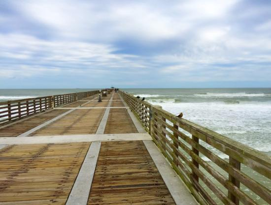 Picture of jacksonville beach fishing pier for Jacksonville fishing pier