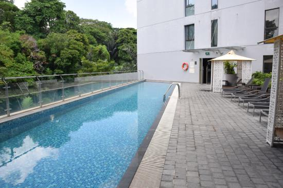 Piscine picture of bay hotel singapore singapore for Hotel singapour piscine