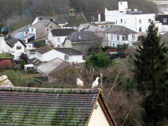 Stoke Gabriel, UK: View from Room