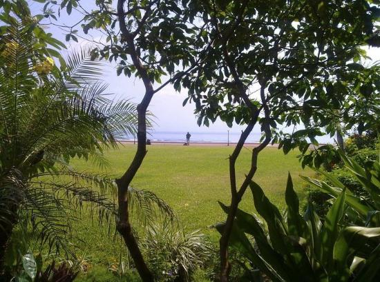 Sea Cliff Hotel: View on Hotel grounds, going to get breakfast
